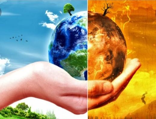 مواءمة التشريع الغابوي مع متطلبات التغيرات المناخية هذا ما دعت اليه منظمات غير حكومية